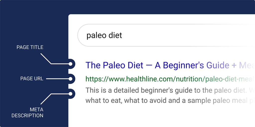 استاندارد نتایج جستجوی ارگانیک گوگل
